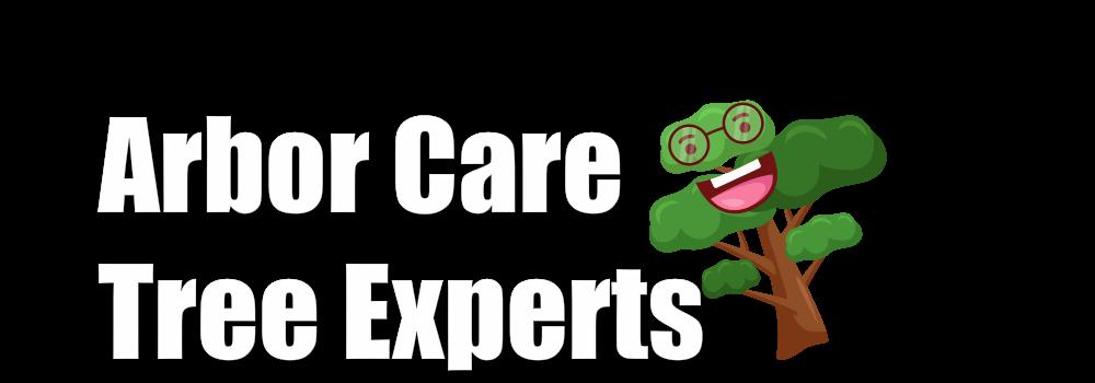 arborcare-tree-experts-hilton-head-best-tree-service